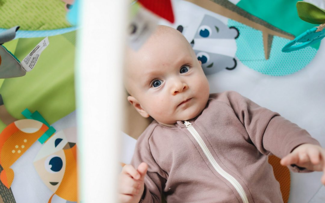 Best Rock 'n Play- Top 4 Organic bouncers for new born & infant 2020