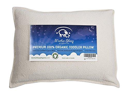 Mother Sheep Organics Premium Organic Toddler Pillows Product Image