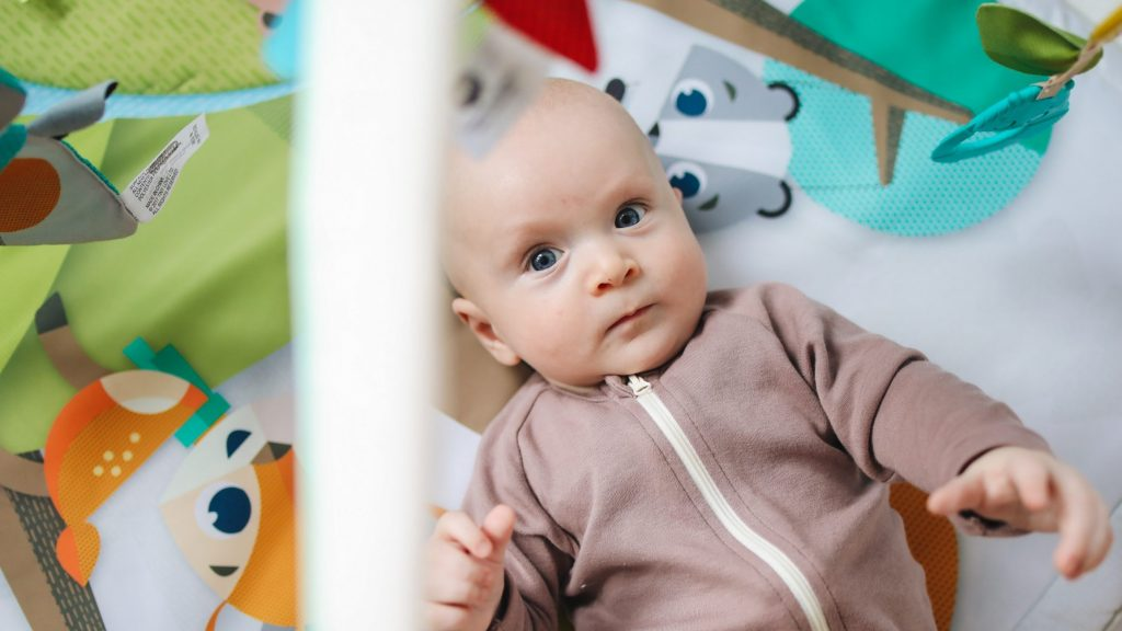 Beste Rock 'n Play Alternative - Top 5 Baby Rocker Swings