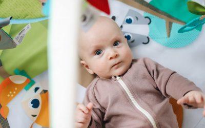 Best Rock 'n Play- Top 4 Organic Rockers & Bouncers for Babies 2020