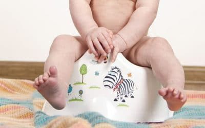 Best Potty Training Seats & Potty Chairs in 2020