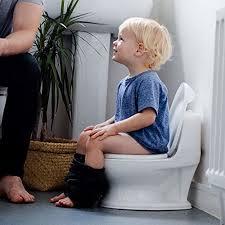 best stand alone potty