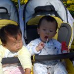 Best Non-toxic Double Side by Side Strollers 2017
